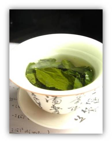 http://shakethepalmtree.files.wordpress.com/2007/09/green-tea-shaded.jpg?w=388&h=496